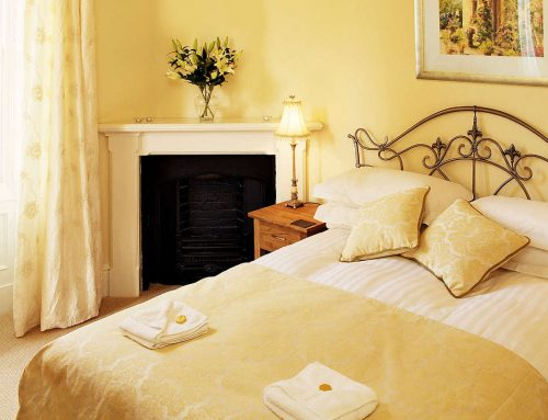 Lady Tower – Pet Friendly Cottages Lake District.